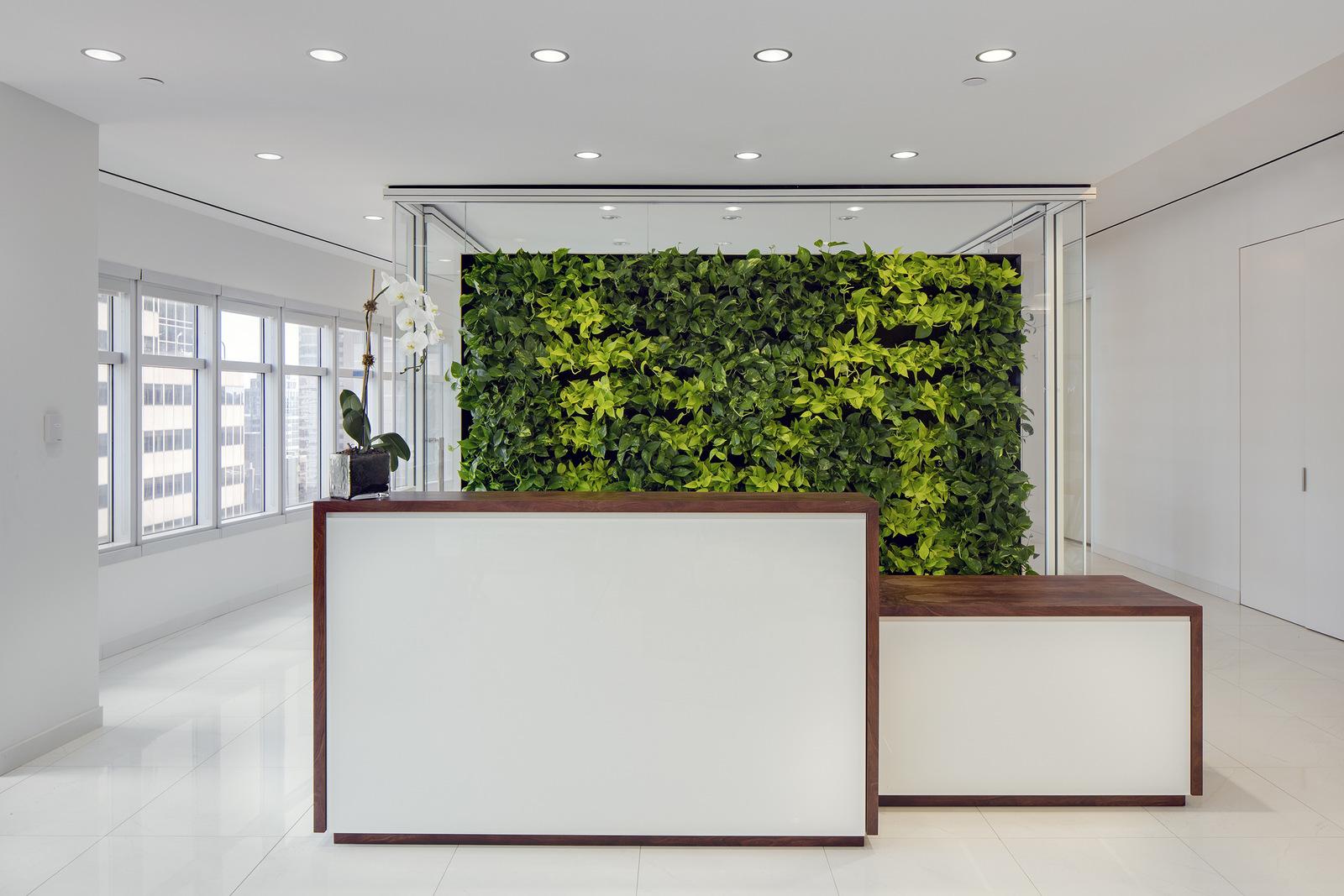 绿色办公装修简单明亮风格
